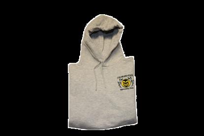 Grey Hooded Sweatshirt
